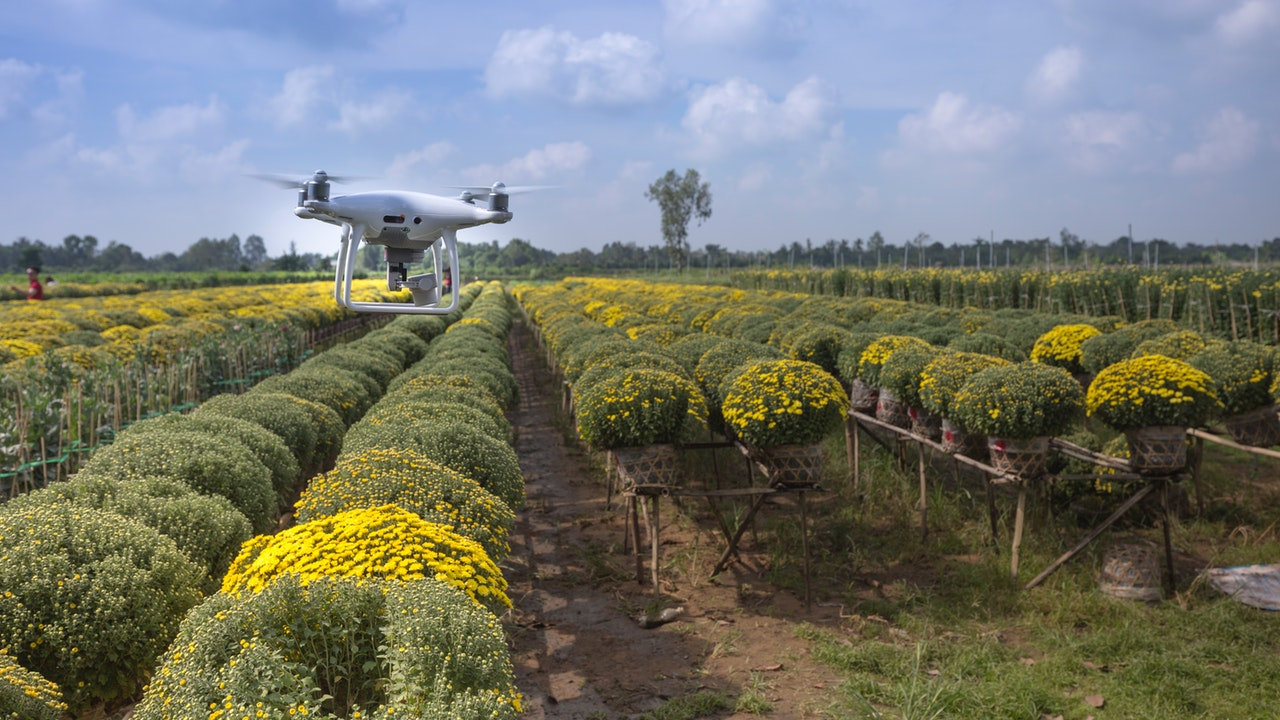 The future of agriculture is being reshaped by innovative and mind-blowing technologies.